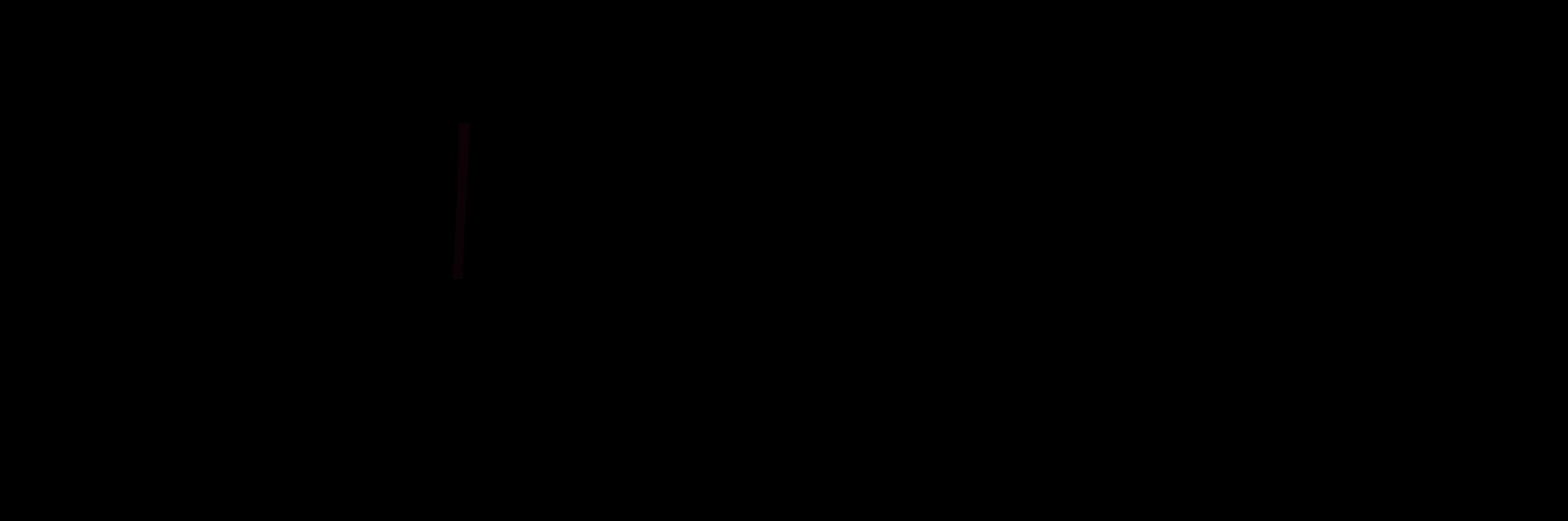 TurnStore | Dein Sport - Unsere Passion-Logo